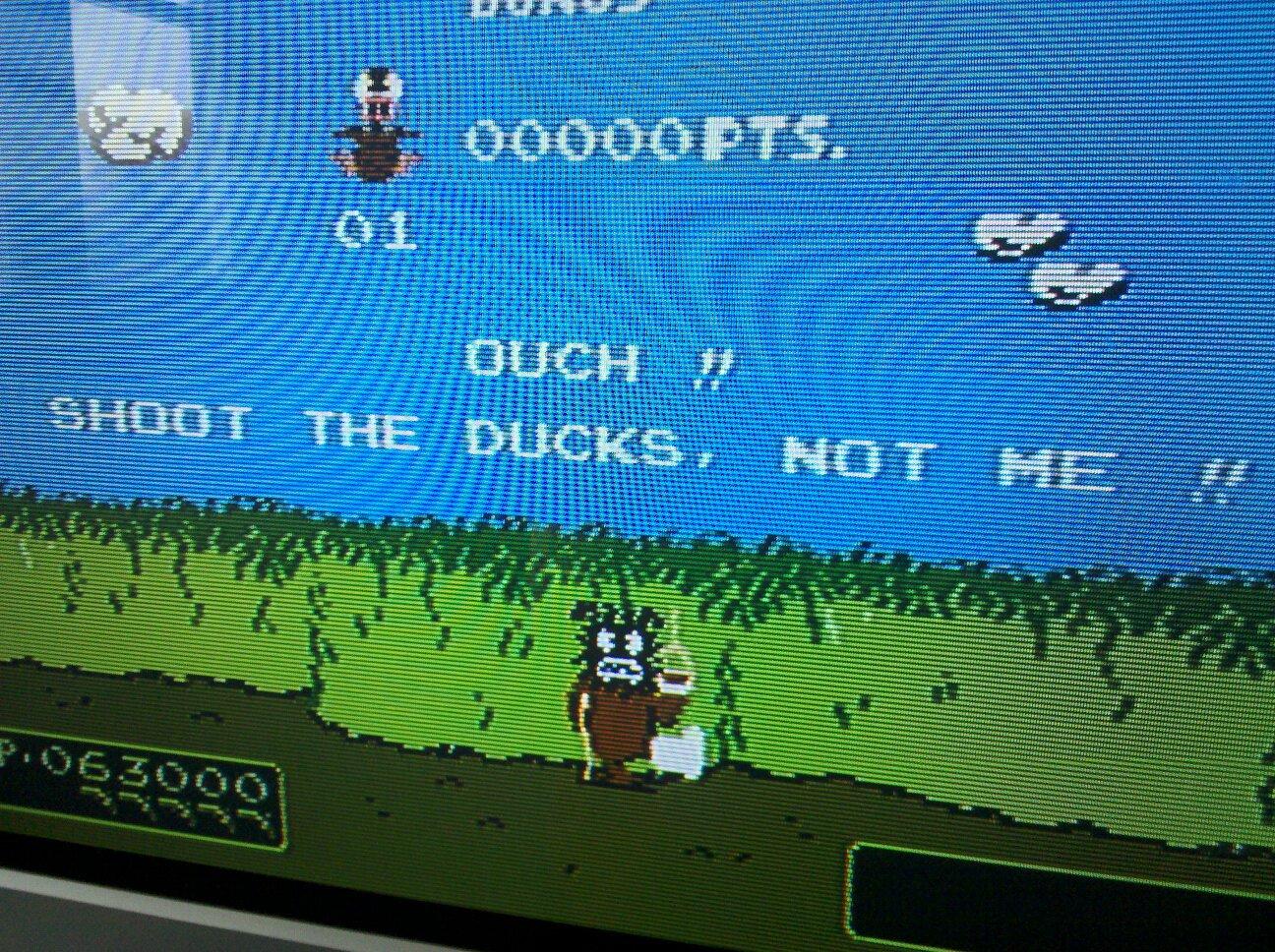 Duck Hunt Arcade Version